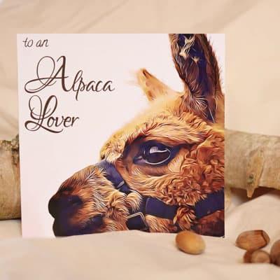 Alpaca Birthday Card