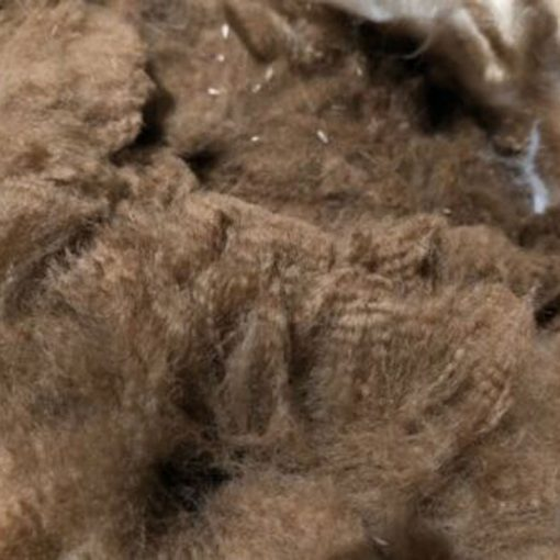 Dark Fawn/Appaloosa Alpaca Fleece